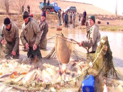 programul-operational-pentru-pescuit-va-fi-deschis-din-toamna