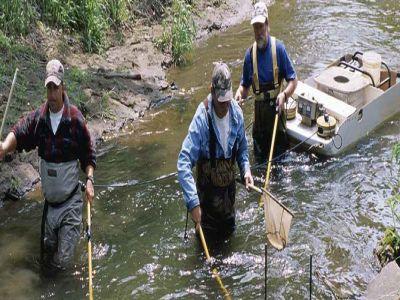 ue-a-fost-de-acord-pescuitul-cu-impulsuri-electrice-interzis-de-la-30-iunie-2021