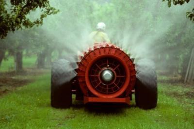 inspectorii-sanitar-veterinari-monitorizeaza-nivelul-pesticidelor-din-fructe-si-legume