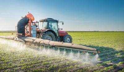 greenpeace-cere-ministrului-agriculturii-sa-nu-acorde-o-noua-derogare-privind-utilizarea-neonicotinoidelor