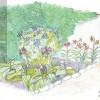 Plan de grădină oferit de BIOPRODUCT: Hortensii, crini, iedera. Scapă de arşiţa verii!