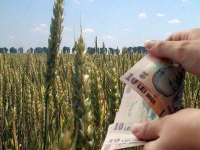 fermierii-cu-suprafete-intre-50-si-250-de-hectare-intra-la-plata-ultimei-transe-a-subventiei