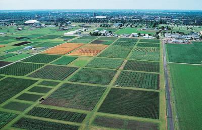 apia-a-scazut-suprafata-totala-pentru-care-fermierii-au-solicitat-subventii