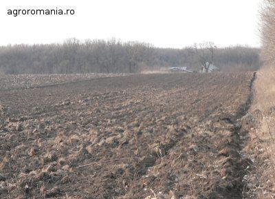 subventia-pe-suprafata-apia-sustine-ca-au-fost-platiti-peste-95-din-fermieri