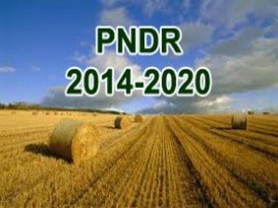 investitiile-in-agricultura-in-topul-solicitarilor-de-finantare-prin-pndr