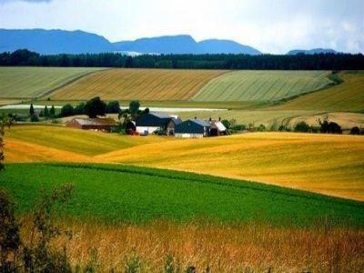 pndr-afir-nu-mai-primeste-cereri-de-finantare-pentru-submasura-investitii-in-exploatatii-agricole-sectorul-vegetal