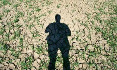 ce-propune-imbunatatirea-normelor-comune-de-contabilizare-a-gazelor-cu-efect-de-sera-in-silvicultura-si-agricultura