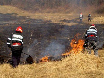apia-reaminteste-ca-arderea-miristilor-pe-terenurile-arabile-aste-interzisa