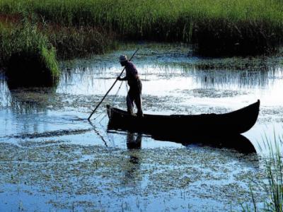 riscam-sa-pierdem-15-milioane-de-euro-din-banii-europeni-alocati-programului-operational-pentru-pescuit