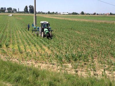 buletin-agrometeorologic-pentru-perioada-14-20-iunie