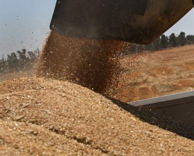 fermierii-dau-vina-pe-ministrul-daea-pentru-prabusirea-pretului-cerealelor