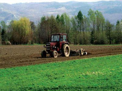 lucrari-agricole-specifice-lunii-martie