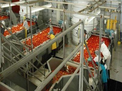 203-milioane-de-euro-prin-pndr-2020-pentru-procesarea-produselor-agricole