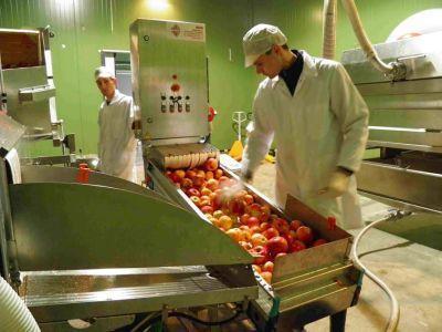 afir-a-prelungit-sesiunea-de-primire-a-proiectelor-pentru-procesarea-si-marketingul-produselor-agricole