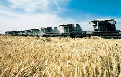 recolta-de-grau-2013-peste-7-milioane-de-tone