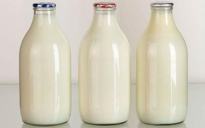 romania-pe-primul-loc-in-ue-la-cresterea-cantitatii-de-lapte-colectat-in-primul-trimestru-din-2014