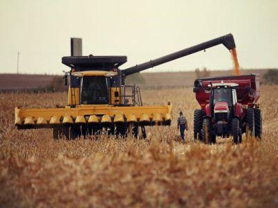 cat-a-valorat-productia-agricola-a-anului-trecut