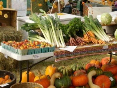 europarlamentarul-daciana-sarbu-sprijina-ideea-aplicarii-tva-verde-la-produsele-bio