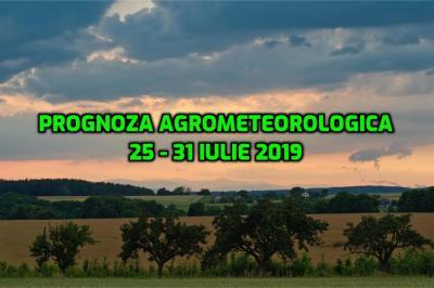 prognoza-agrometeorologica-pentru-perioada-25-31-iulie-2019