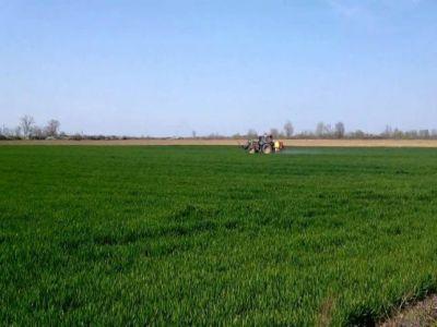 buletin-agrometeorologic-pentru-perioada-20-26-aprilie