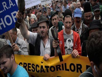 crescatorii-de-animale-ameninta-cu-proteste-in-strada