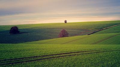 recensamantul-general-agricol-2020-a-inceput-va-dura-pana-la-31-iulie-2021