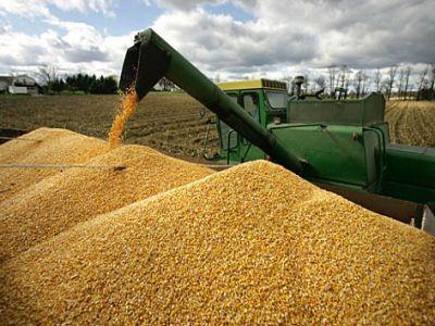 cultivarea-cerealelor-o-afacere-tot-mai-profitabila