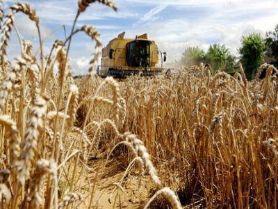 comisia-europeana-estimeaza-productii-record-de-cereale
