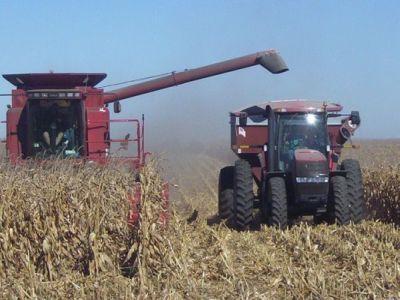 agricultura-romaneasca-productii-record-si-castiguri-mici