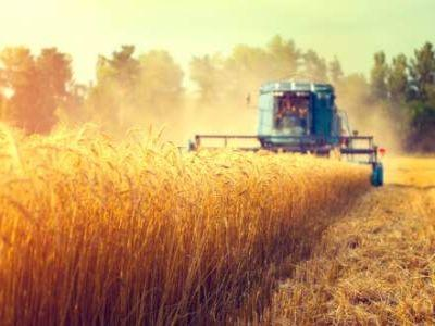 romania-desemnata-cea-de-a-opta-putere-agricola-a-ue-in-2016