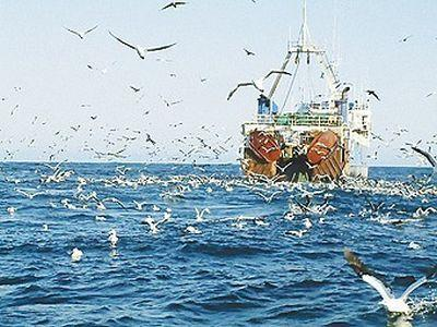 comisia-europeana-anunta-deduceri-din-cotele-de-pescuit