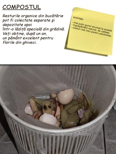 despre-cum-mi-am-injumatatit-cantitatea-de-gunoi-mormanul-de-compost-din-gradina