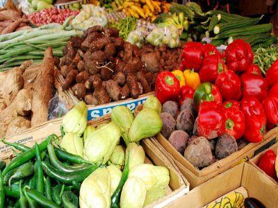 discutii-pe-tema-legii-privind-diminuarea-risipei-alimentare