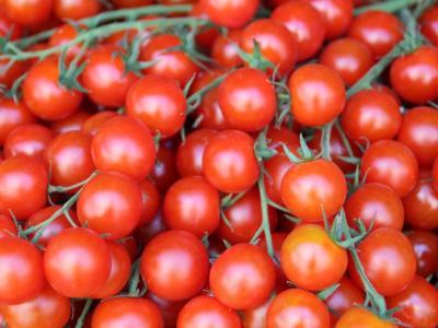 madr-pregateste-60-de-milioane-de-euro-pentru-fermierii-care-cultiva-rosii