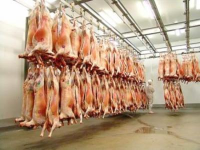 crestere-a-sacrificarilor-de-bovine-porcine-ovine-si-caprine-in-2011