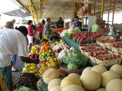 exporturile-cu-produse-alimentare-au-crescut-cu-543-in-primele-doua-luni-ale-anului-comparativ-cu-2013