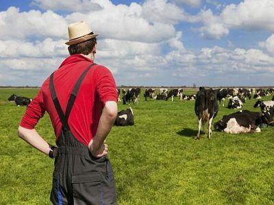 sanctiuni-aplicabile-fermierilor-care-nu-respecta-conditiile-de-accesare-a-subventiilor