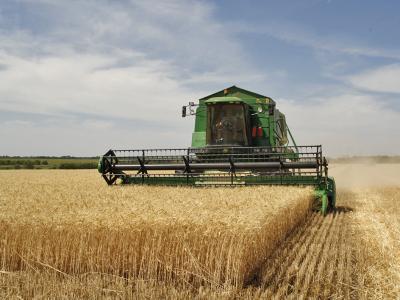 se-relanseaza-submasura-pentru-asigurarea-culturilor-din-pndr-2020