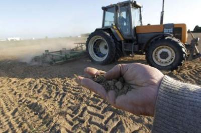 seceta-2012-se-ia-in-calcul-acordarea-de-despagubiri-fermierilor-afectati