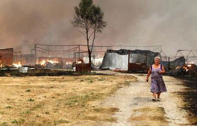 pierderi-de-un-miliard-de-euro-in-agricultura-rusiei-datorita-secetei