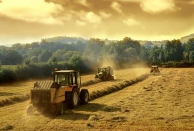 noile-politici-agricole-si-securitatea-alimentara-in-conditiile-schimbarilor-climatice