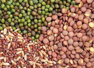 ministerul-agriculturii-vrea-o-baza-de-date-cu-furnizorii-de-seminte-pentru-agricultura-ecologica