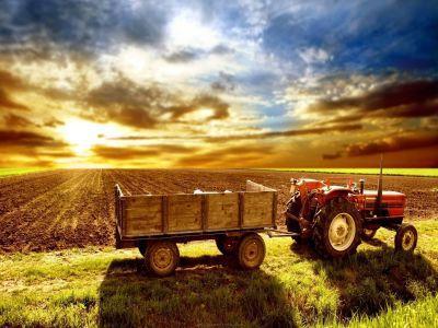 ministerul-agriculturii-modifica-legislatia-referitoare-la-subventiile-pe-motorina