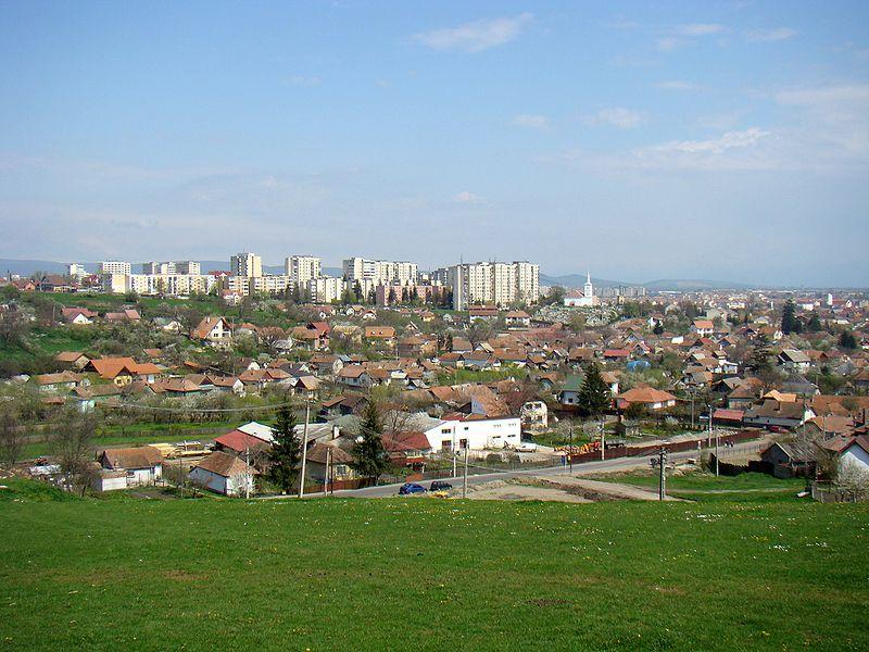 orasul-sfantu-gheorghe-va-organiza-in-aceasta-vara-festivalul-florilor-comestibile