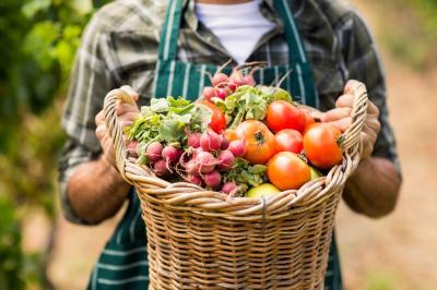 cum-recunosti-atacul-de-mana-si-cum-iti-protejezi-culturile-de-legume-si-cartof-impotriva-acestei-boli