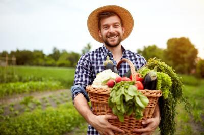 cum-sa-cresti-productivitatea-culturilor-tale-ce-schimbari-ar-trebui-sa-faci-in-ferma