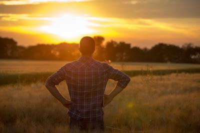 5-probleme-care-afecteaza-profund-piata-agricola-din-romania
