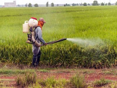 norme-de-igiena-si-siguranta-pentru-produsele-fitosanitare