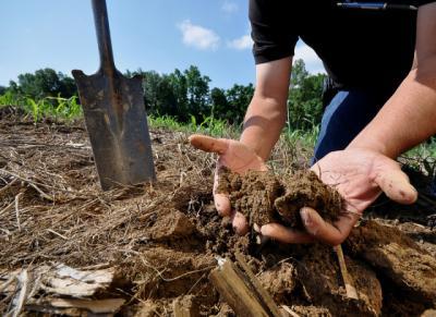 copa-cogeca-saluta-decizia-comisiei-europene-de-a-retrage-propunerea-de-directiva-europeana-privind-solul
