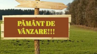 stanescu-este-foarte-important-sa-oprim-specula-cu-terenuri-agricole
